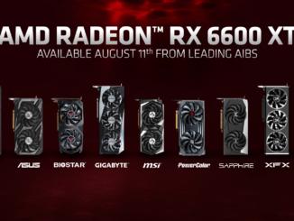 rx 6600 xt custom design release preis