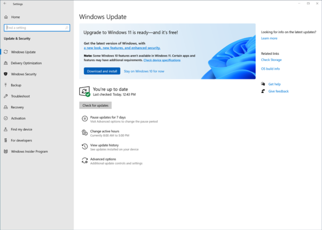 Windows 11 Release Version